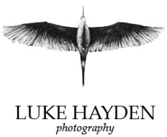 essex-wedding-photographer-logo-244x200 copy